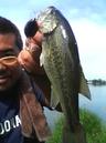bass_123_1.jpg