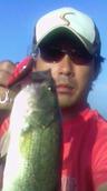 bass_167_1.jpg