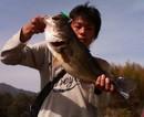 bass_338.jpg