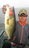 bass_586_1.jpg