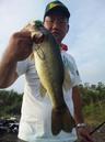 bass_761_1.jpg