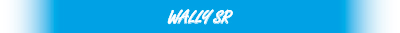 wally_sr_logo01.jpg
